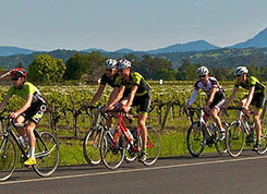 Pedal for Pinot Package