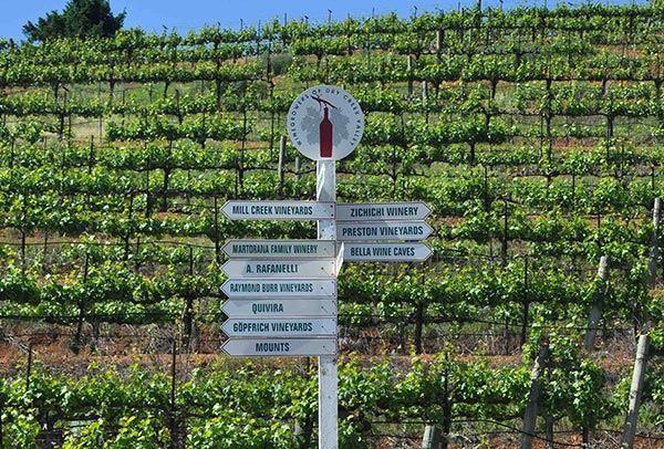 Sonoma Wine Country
