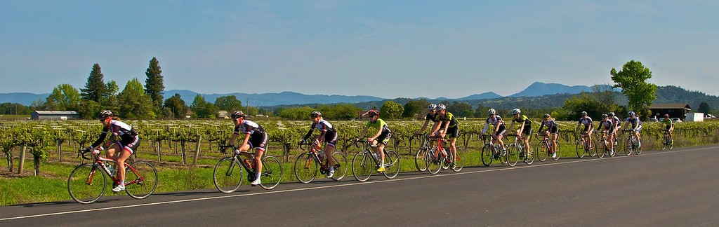 Pedal for your Pinot in Sonoma